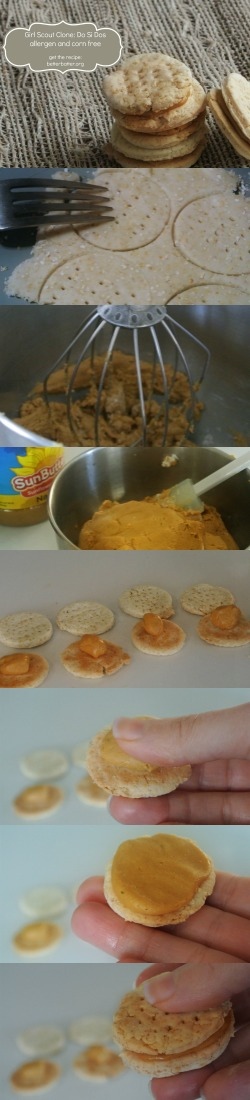 Girl Scout Clone: Do Si Dos - Better Batter Gluten Free Flour