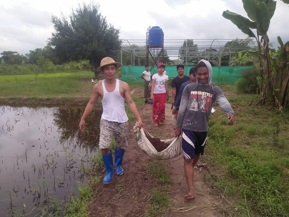 need myanmar sept 17 1
