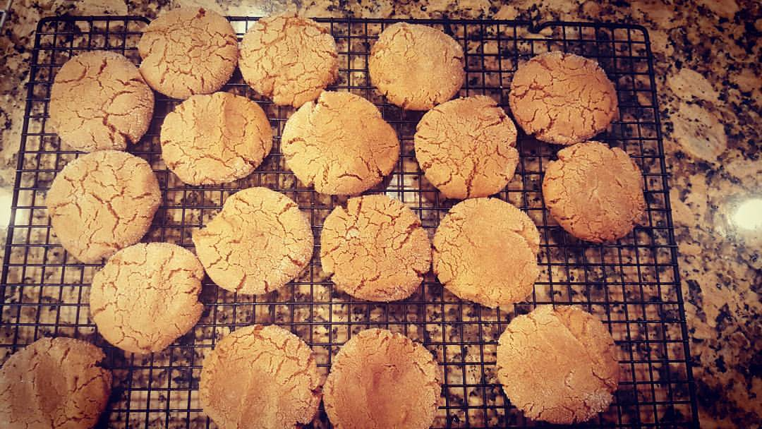 Gluten Free Dairy, Egg and Nut Free Molasses Cookies